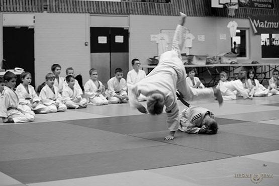 Judo Douvres en fête - photo : Jérôme Rémy